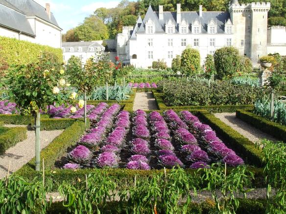 Loire Valley October 2011 050