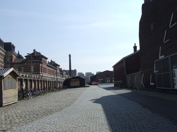 LILLE 1 May 2013 001
