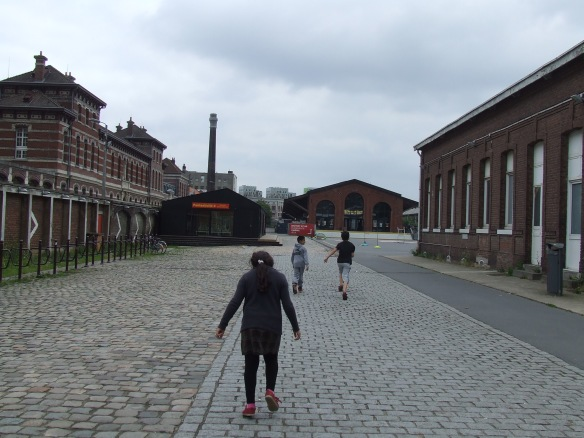 Lille June 29-30, 2013 061
