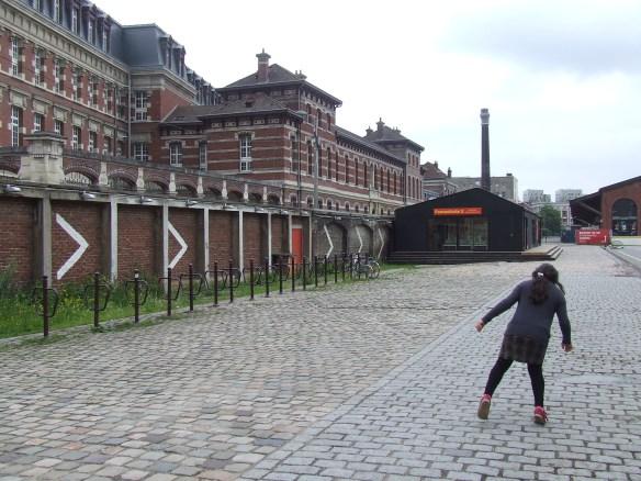 Lille June 29-30, 2013 063